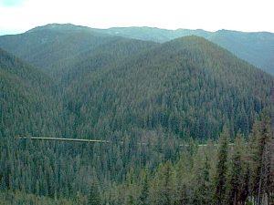 Rails To Trails Idaho Map.Friends Of The Coeur D Alene Trails Cda Hiawatha And Bike Trails